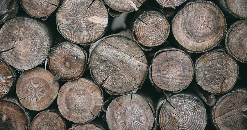 Quand faut-il acheter son bois de chauffage ?