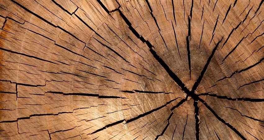 Qualité du bois : élément indispensable pour un bon chauffage